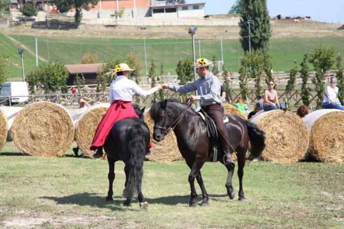 Rural Festival 2018