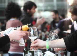 sorgente del vino live