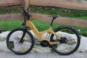 e-bike legno
