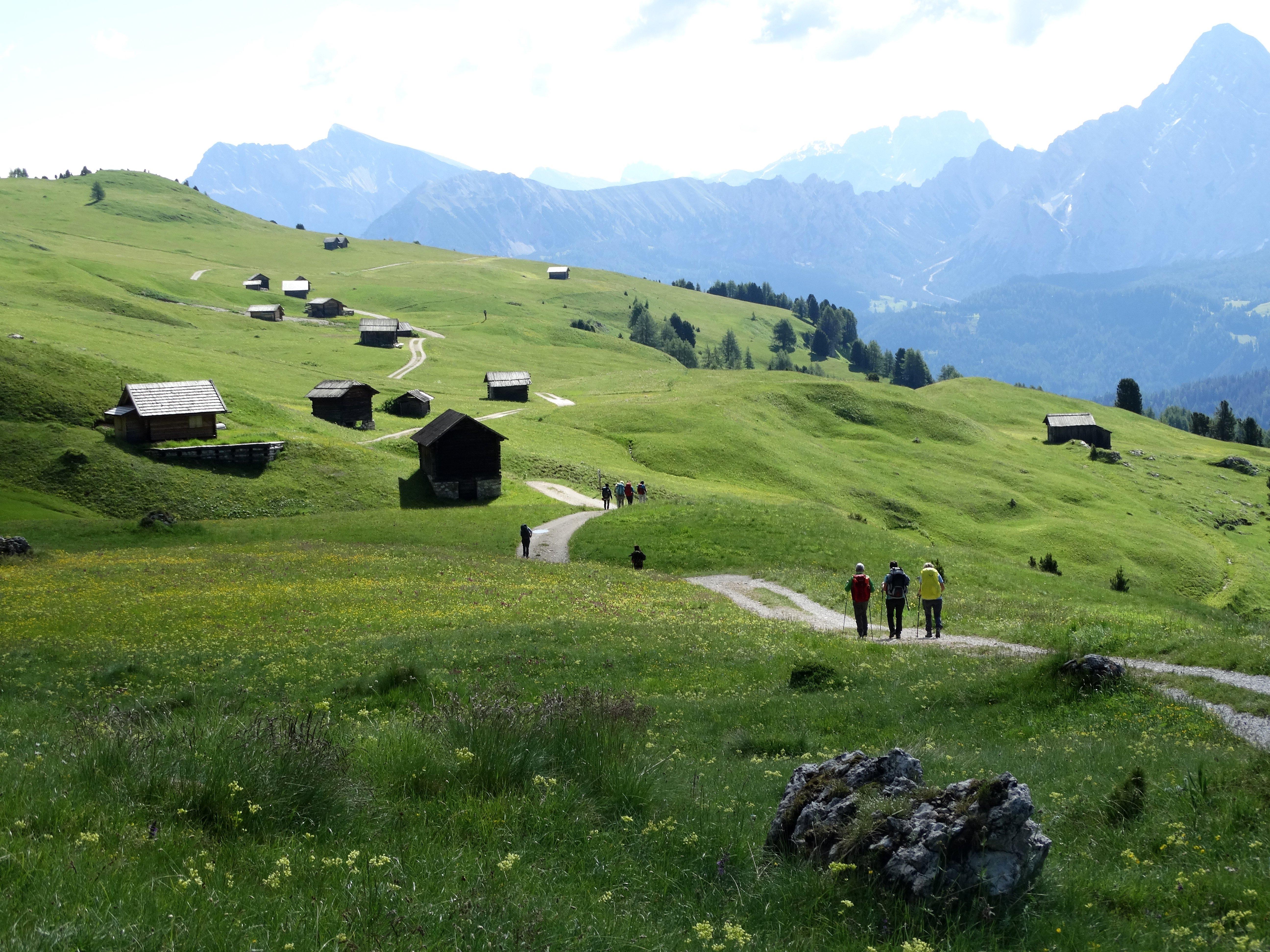 Camminare sulle Alpi