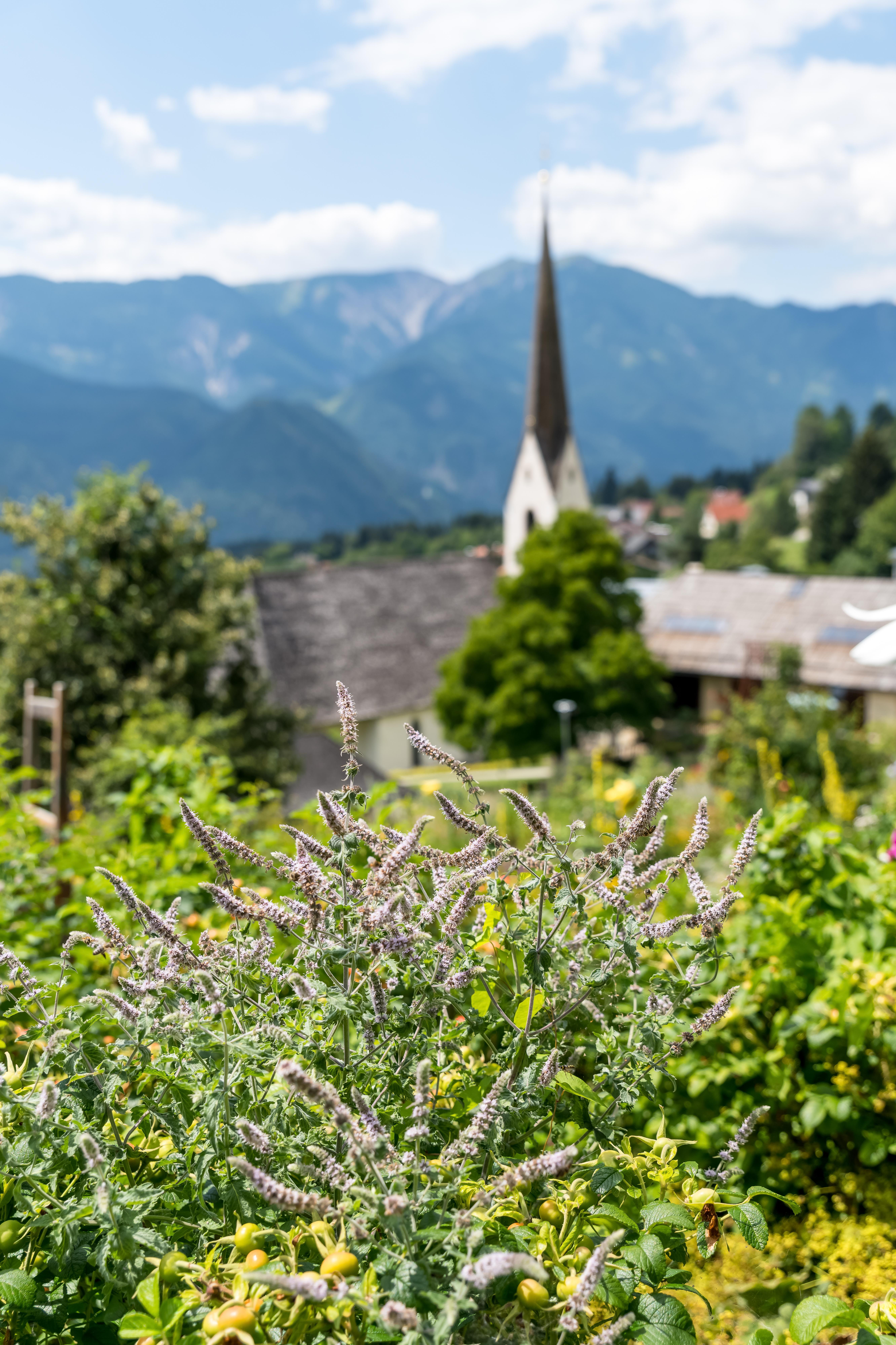Irschen villaggio delle erbe in Carinzia (c) Österreich Werbung_Michael-Stabentheiner