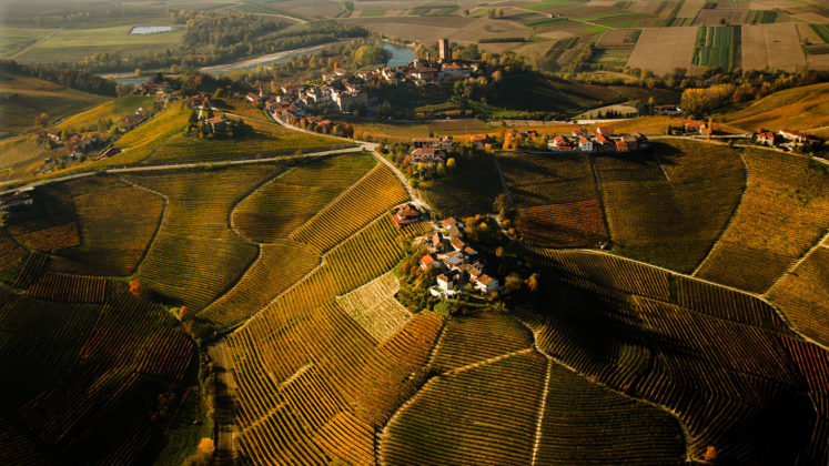 Enogastronomia in Piemonte