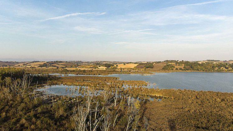 Riserva Naturale Regionale del Lago di Montepulciano