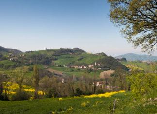 Le Colline del Parmigiano Reggiano DOP