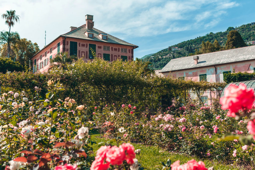 Nervi Parco e roseto. Foto ©Carolina Fanni