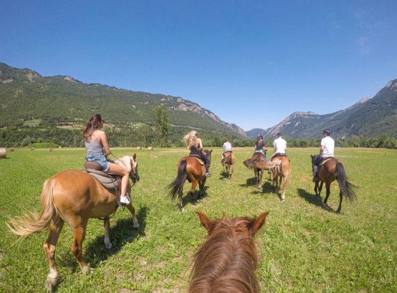 Provincia di Cuneo - Valle Stura, cavalli. Foto ©Romina Condemi/Archivio ATL del Cuneese