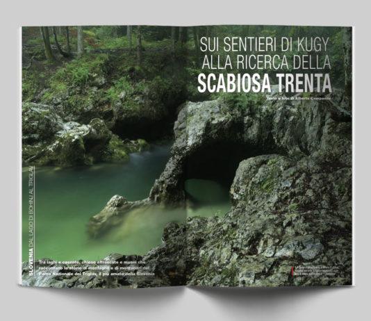 Slovenia, dal Lago di Bohinj al Triglav - Sui sentieri di Kugy alla ricerca della Scabiosa Trenta. Testo e foto di Alberto Campanile - Itinerari e Luoghi 282 luglio 2020