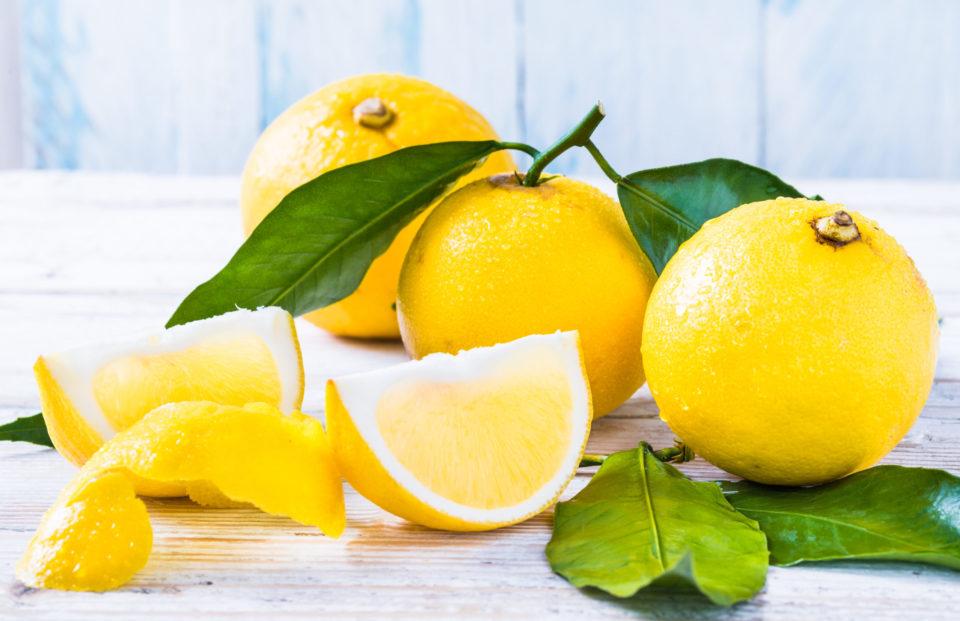 Il bergamotto, uno dei simboli di Reggio Calabria e dell'intera regione.